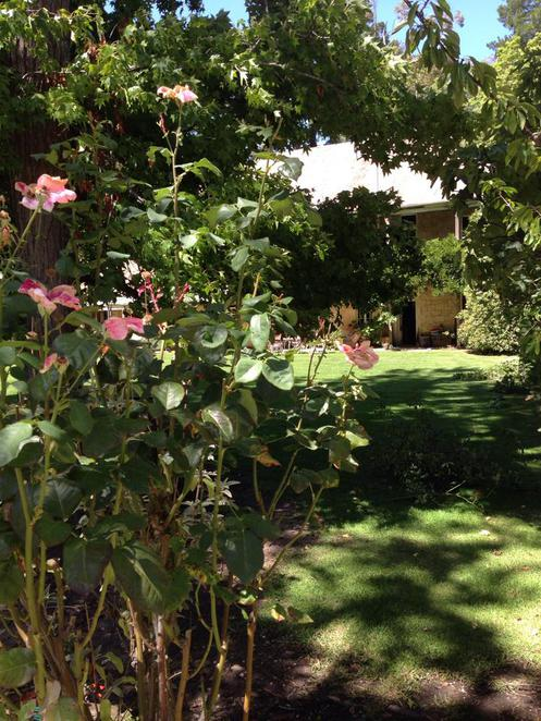 Adelaide, Glen Ewin Estate, Beautiful, Function, Venue, Figs, Food, Wine, Weddings, Gardens, Lake, South Australia.