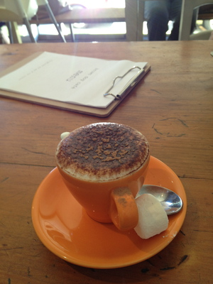 Babycino brown dog cafe woolloongabba