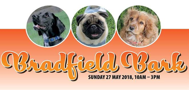 bradfield bark, food, music, entertainment, dog friendly, dog event, sydney, free, sydney dogs and cats home, charity, fundraiser, milsons point