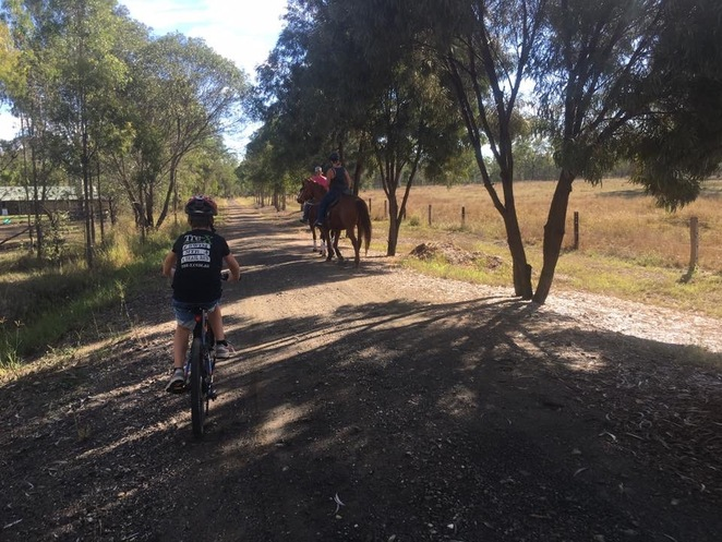 Approach horse riders cautiously on the rail trail