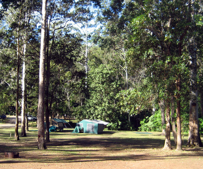 The Charlie Moreland Campground has fire rings placed throughout the campgrounds