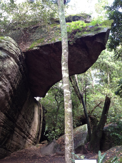 The Hanging Rock at the Shoalhaven Zoo in Nowra, NSW