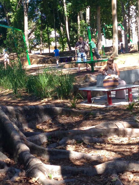 Knox Park Adventure Playground, Murwillumbah, local attraction, imaginative play, skate park and scooter precinct, picnic areas, beautiful park, car parking, shady play areas, soccer, netball, handball facility, flying fox, play equipment for all aged children, safe play area, leisure activities for families,