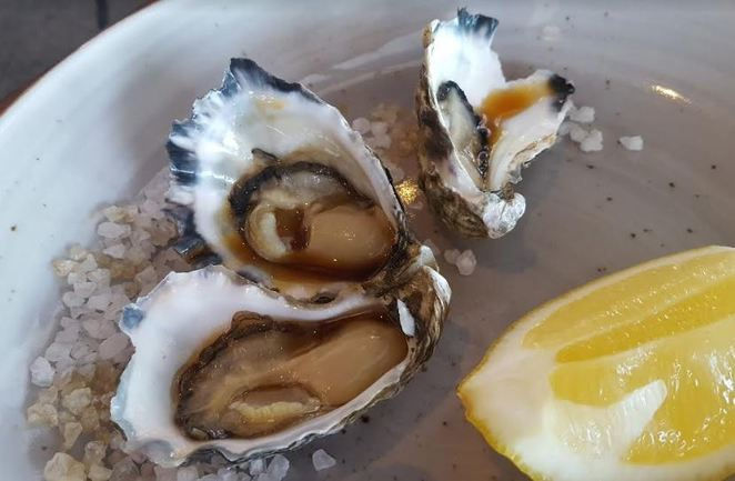 oysters, steamers bar and grill, wollongong