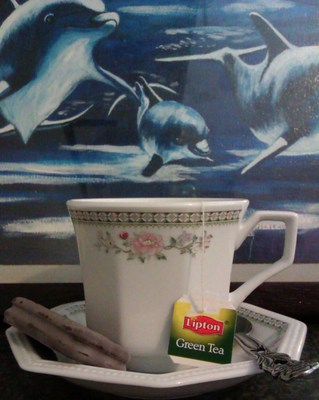 Tea with Dolphins
