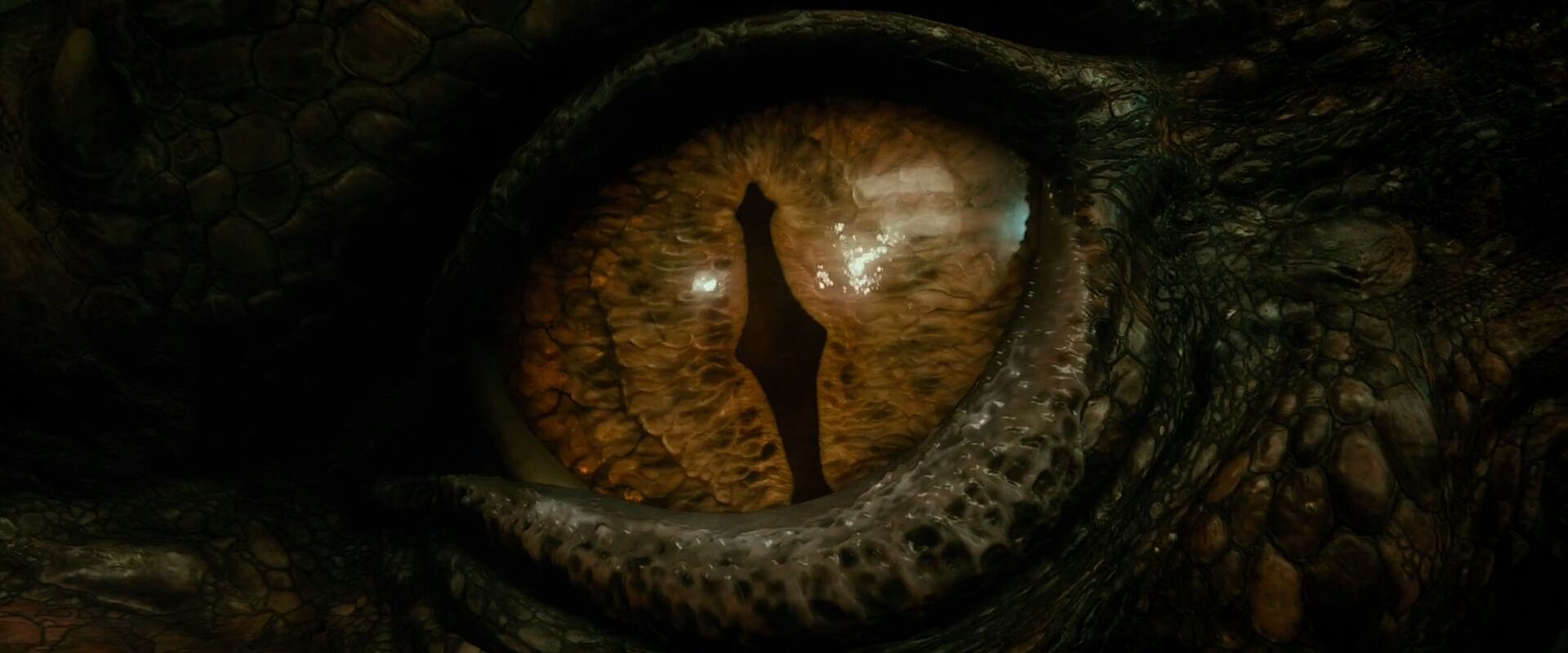 Homesick Game The Hobbit The Desolation Of Smaug Film Review Everywhere