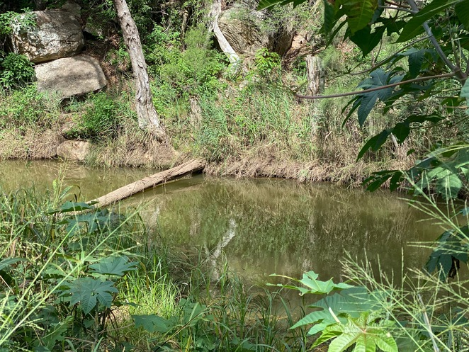 One of many swimming holes along the creek