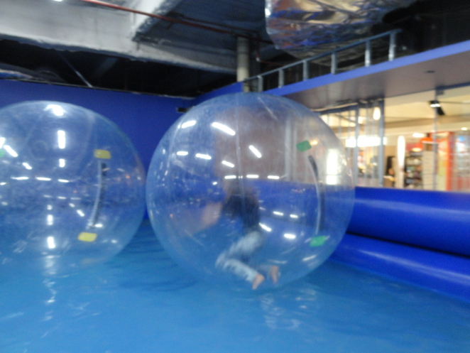 Waterball rides in Darling Harbour