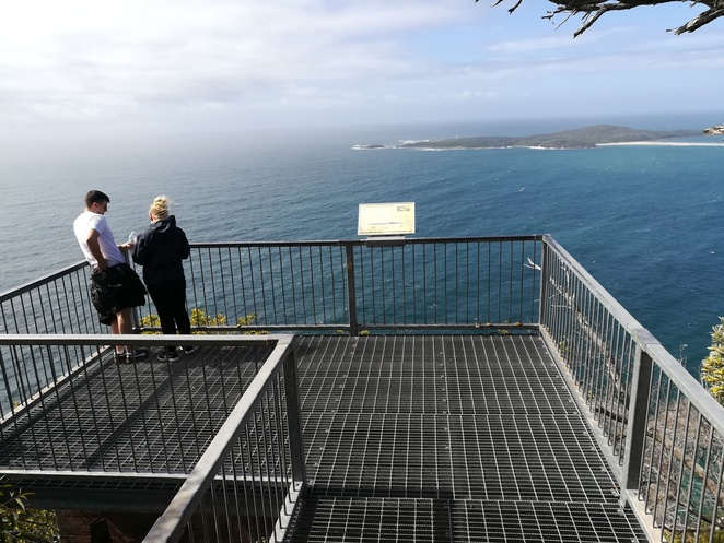 whale watching lookouts, boat harbour, nelson bay, port stephens, NSW, whales, lookouts, free, boat harbour, views, whales,
