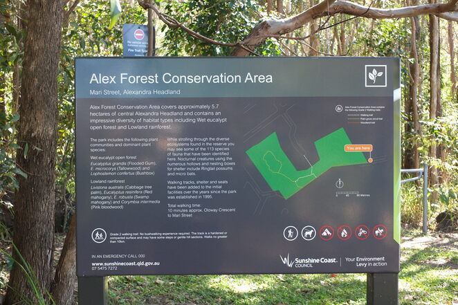 Alex Forest Conservation Area, Alexandra Headland, remnant of coast forest, walking trails, revegetated forest, wildlife reserve, ringtail possums, microbes, rainbow lorikeets, bush turkeys, bench seating, species identification plates, Sunshine Coast Wildflower Festival, self-guided walks, gravel trails, leashed dogs permitted, Nelson Park, family park, honeyeaters, kingfishers, egrets, herons, water lilies, eels, barramundi, tadpoles, frogs, Story Seat, outdoor enthusiasts, time-poor, beat the crowds, go bush, enjoy some quiet time