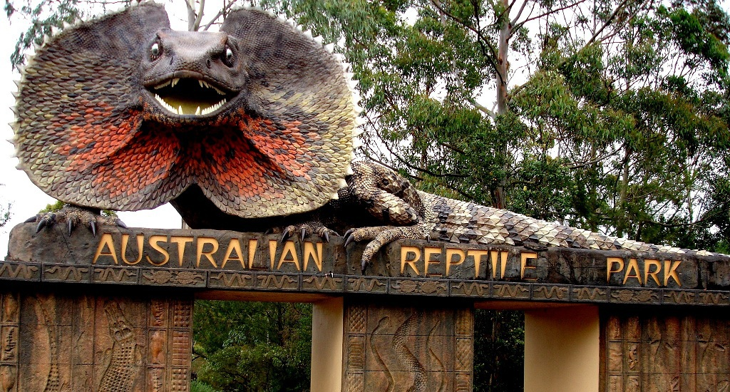 d630ff30cb6f31 6 Reasons to Bring your Family to the Australian Reptile Park and ...