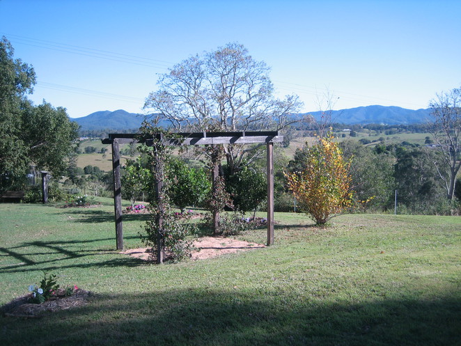 Blue Ridge Lavender Farm and Retreat, King Scrub, Dayboro, bed and breakfast, lavender, Queenslander, cows, relax, massage, skin care products