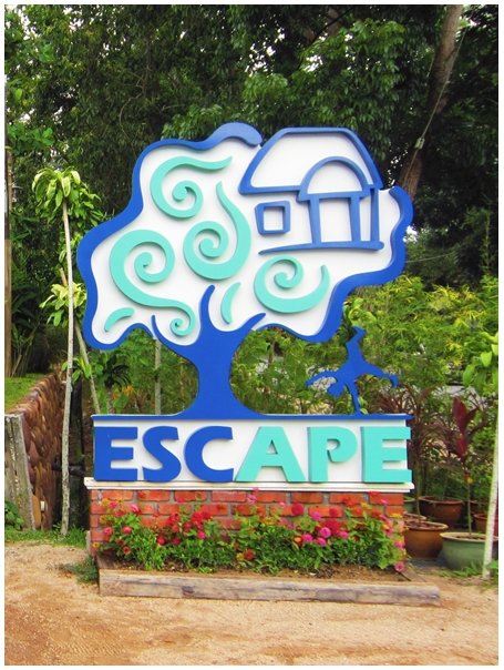 Escape Adventureplay Theme Park, Escape Penang, obstacle course, flying lemur, monkey business, wall climbing