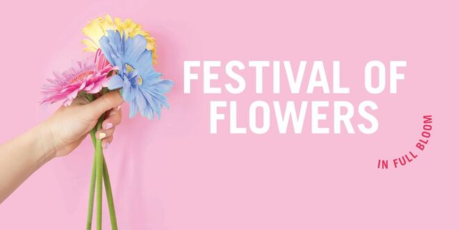 festival of flowers 2019, community event, fun things to do, family friendly, family fun, rhodes waterside, workshops, prizes, giveaways, competitions, flower sphere installation, floral mural by shannon crees, community flower wall, ikea watering can giveaway, school holidays succ with little succers, build-a-bear workshop, activities, entertainment, fun for kids