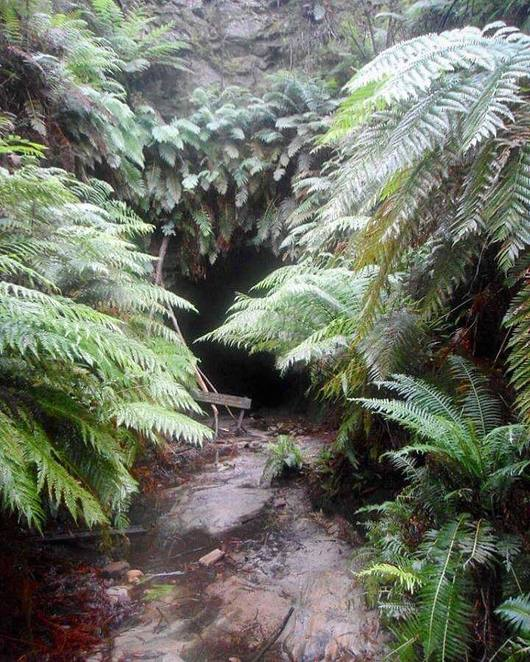 glow worm, tunnel, lithgow, newnes, state forest, great western circuit, escape sydney, over the mountains, roadtrip, nsw