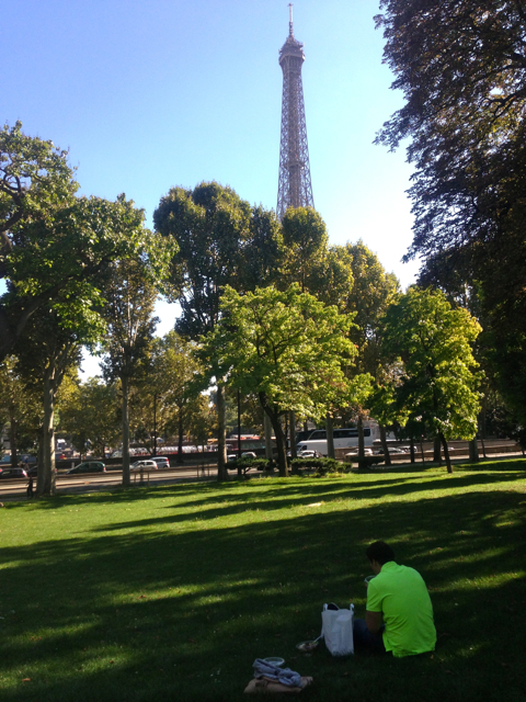 paris,france,view,eiffel tower,tall,french,tourist,beauty,building,picnic,food,sun