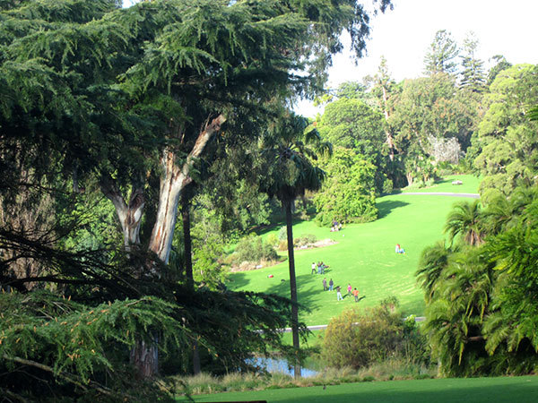 Royal Botanic Gardens, Picnic in the Botanical Gardens, Walking trails in Melbourne, Map for Botanical Gardens Melbourne