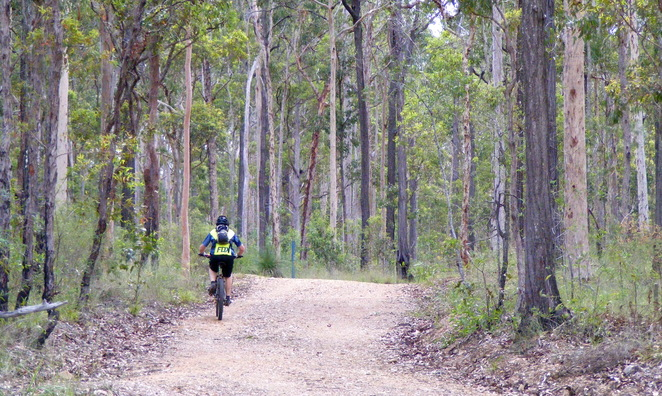 Mountain Biking on a share path at Samford Conservation Park