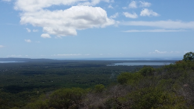 Tewantin National Park, view, lookout, park, forest