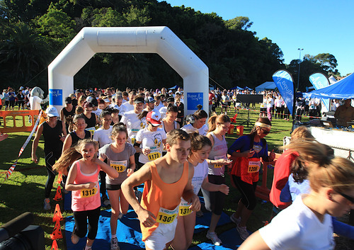 Top Charity events in Sydney, Memory walk and jog, sydney event, fundraising