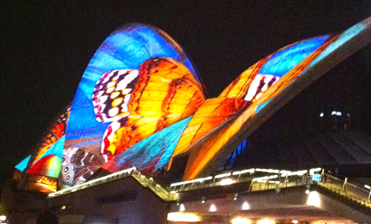 Vivid Sydney, Sydney Opera House, Interactive light festival, Sydney events, Cruise Sydney Harbour, What to do in May in Sydney,