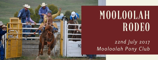 2017 Mooloolah Rodeo, Mooloolah Pony Club, Bull Riding, 3 categories, open, novice, junior, saddle broncs, live band after rodeo, food, licensed bar, early bird tickets, Jillaroos, Jackeroos, muster, stampede, thrills and spills