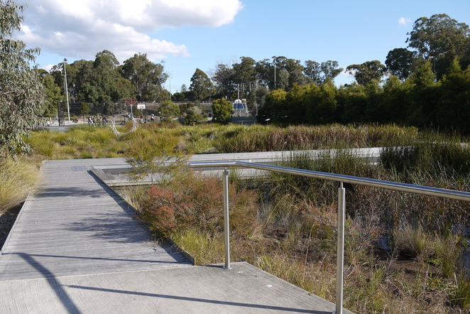 Best wetlands in Sydney, wetlands, wetlands sydney, nature, environment, nature walks, wetlands habitats, constructed wetlands