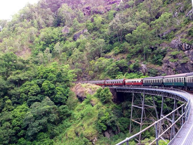 cairns, things to do, skyrail, kuranda, railway, tourist, holiday, trip, things to see, queensland, tropical, rainforest, nature, scenic railway, train