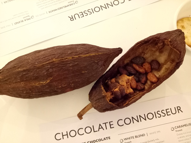 Chocolate, chocolatier, cacao, cacao beans, swiss chocolate, dark chocolate, daintree, milk chocolate, sisko chocolate, taste testing, workshop, tasting experience, harveast