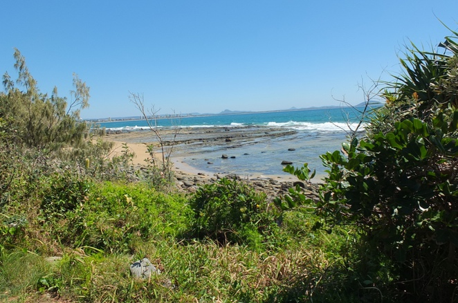 Dog-friendly beaches, Sunshine Coast, Coolum Beach, Buddina Foreshore Reserve, Buddina Beach, Noosa Spit, Currimundi Beach, Moffat Beach, North Shore Beach, off-leash, beach, sand, water
