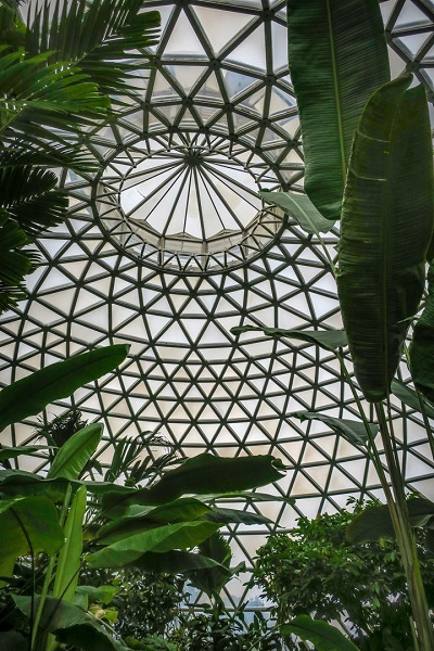 geodesic dome, domes, brisbane, botanic, gardens, tropical display dome, may cross