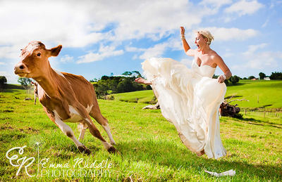 Let your hair out at Maleny Dairies.