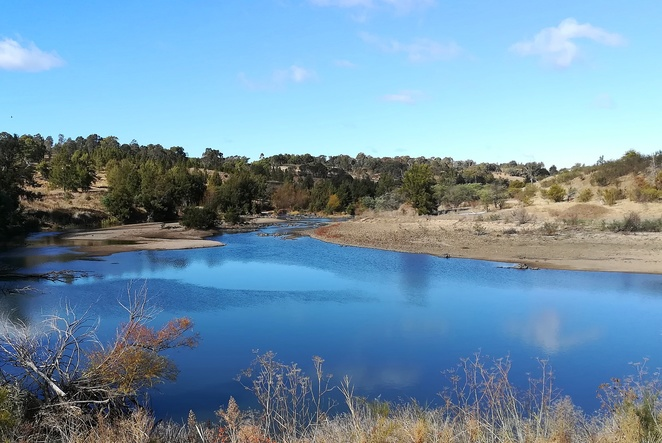 pine island north, tuggeranong, tuggeranong wall, canberra, bushwalks, murrumbidgee river, walks, hikes, signs, pine island to kambah pool, ACT