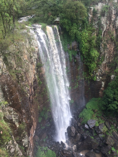 queen mary falls, waterfalls, scenic rim