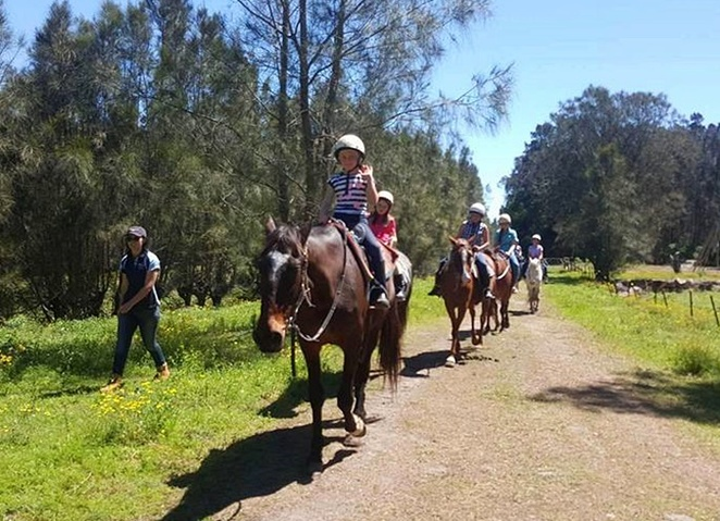 sahara trails, port stephens, NSW, school holiday activities, kids, children, family, family friendly, horse riding, horses, NSW,