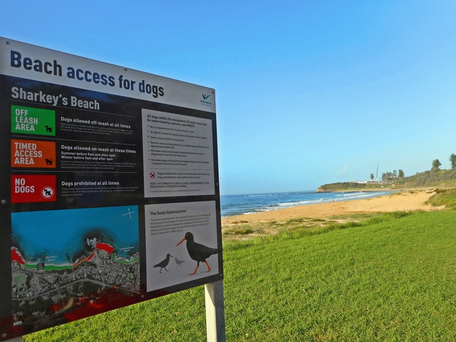 sharkeys beach, wollongong, grand pacific drive, road trips from canberra, coledale, austinmer, NSW,ACT,