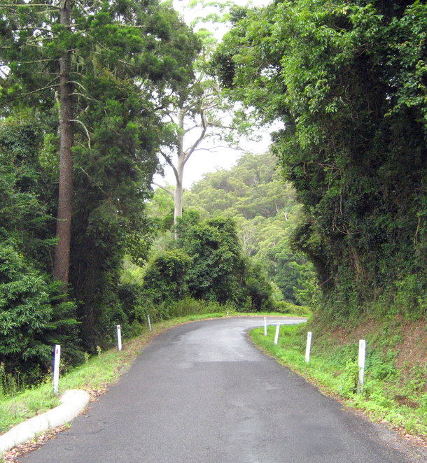 The road also goes through lovely forest
