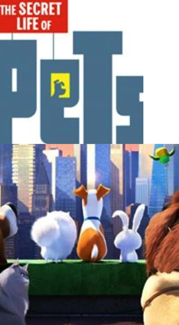 The secret life of pets, The secret life of pets Fundraiser Wallis Cinemas, Guardian Angel Animal Rescue, Lost Pets of SA Adoption and Be The Change Animal Shelter and Lucky Little Paws Rescue, dog cat pet adoption, helloworld, PETstock, Savour-Life, The secret life of pets full movie, The secret life of pets trailer 2016