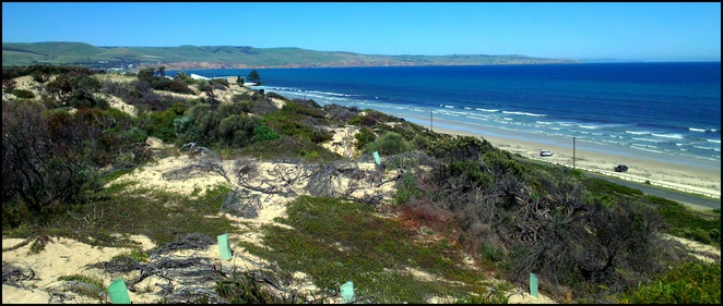 Aldinga Beach, Free Activities, School Holidays, Family Activities