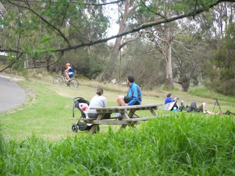 bell bird park yarra bend bush flora fauna native kids children explore experiential learning