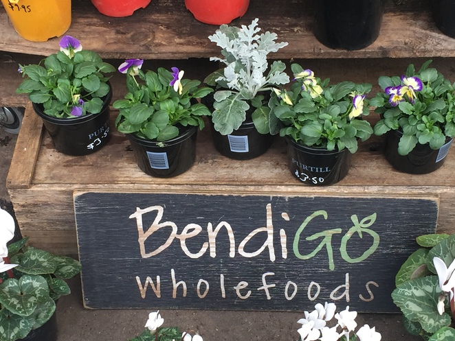 bendigo whole foods