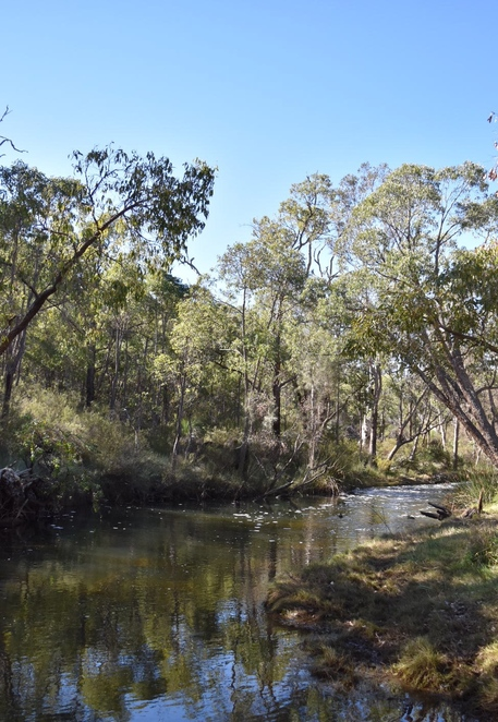 dog friendly hike, day trip, family friendly hike, picnic area, Perth Hills