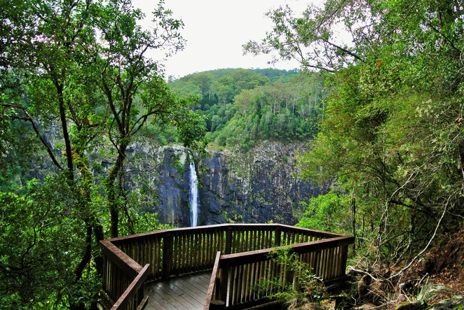 Ellenborough Falls - The Knoll