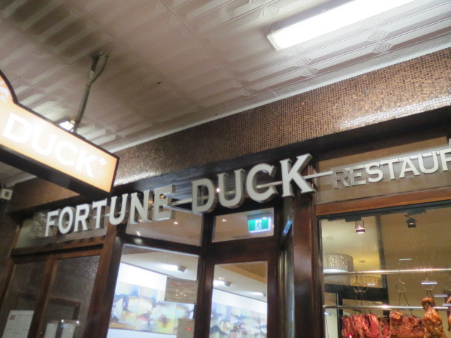 Fortune Duck, Adelaide