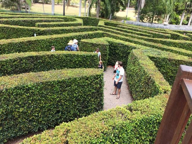 maze, forest, Sunshine Coast, family, challenge, outdoors
