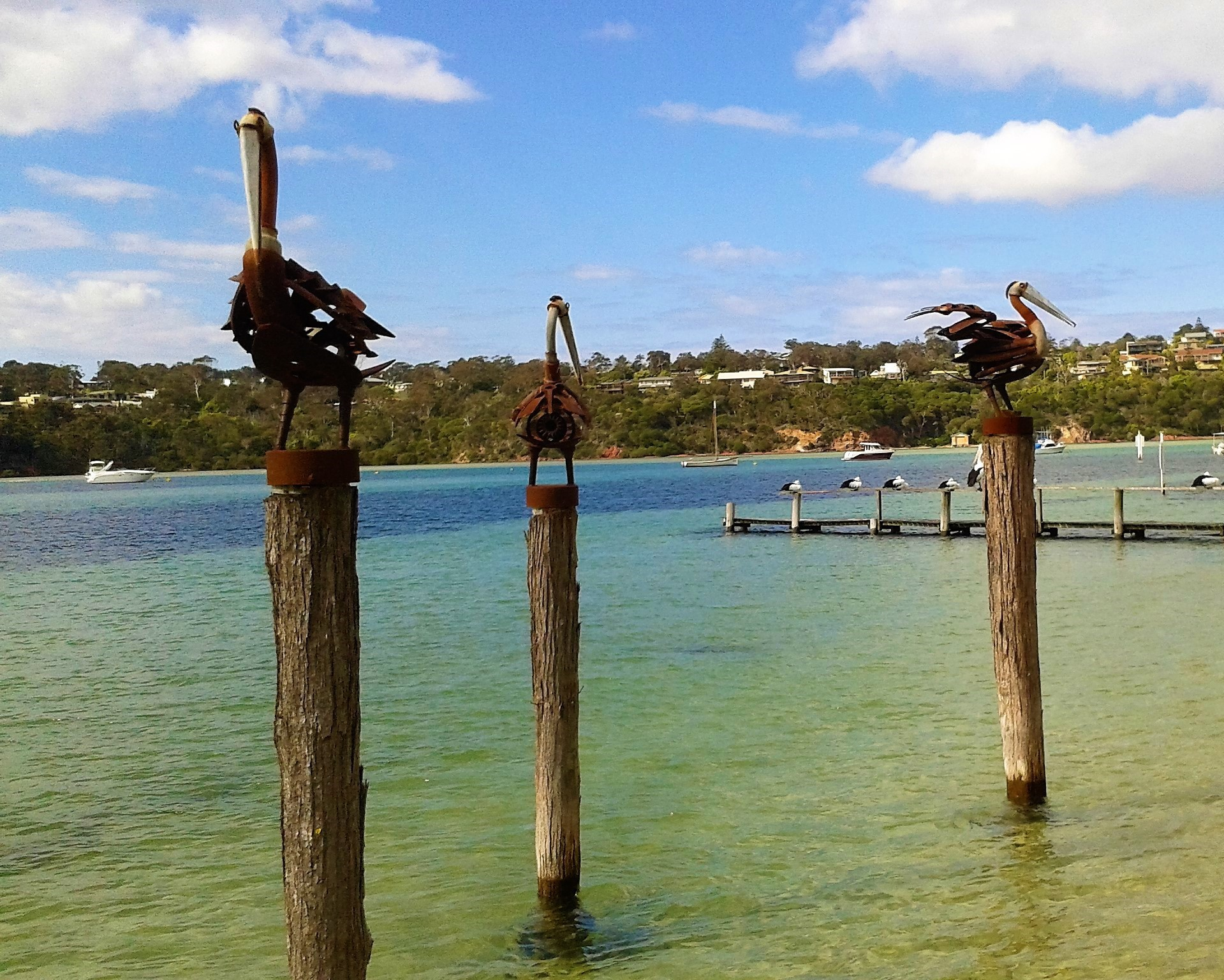 Road Trips From Canberra - Merimbula