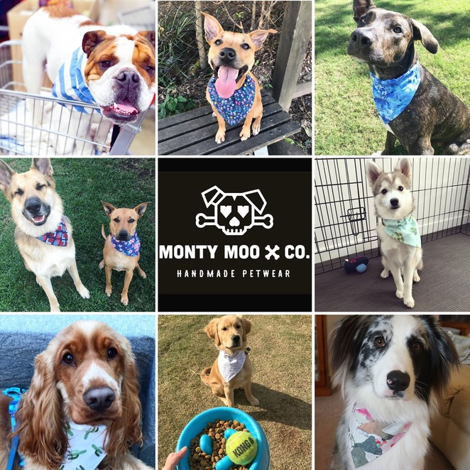 nom nom pets, mila and co, monty moo and co, the pawty barkery, paw printery, dog businesses, dog treats, custom pet portrait, dog accessories, bandanas, healthy, small business, local business, support local, shop local, Brisbane, Australia, dog, markets, Instagram, Facebook, shopping