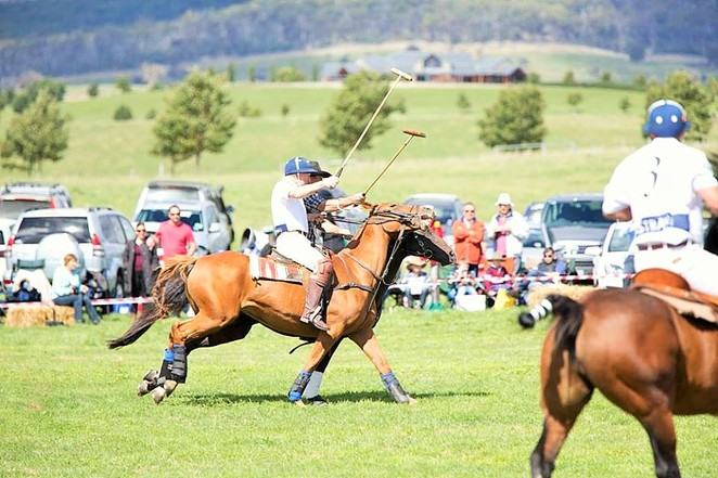 Festivals in Victoria,Festivals 2018,Festivals in Australia,Unusual festivals,Weird festivals,Things to do near Melbourne,Victoria festivals,Places to visit in Victoria,Food festival,Peculiar festivals,Dinner Plain Geebung Polo,Things to do in Dinner Plain,Geebung Polo,Things to do in the high country,