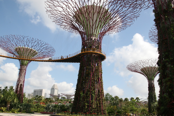 Gardens by the Bay, Super Trees