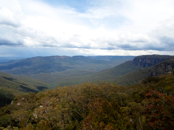 jamison valley, wentworth falls lookouts, blue mountains lookouts